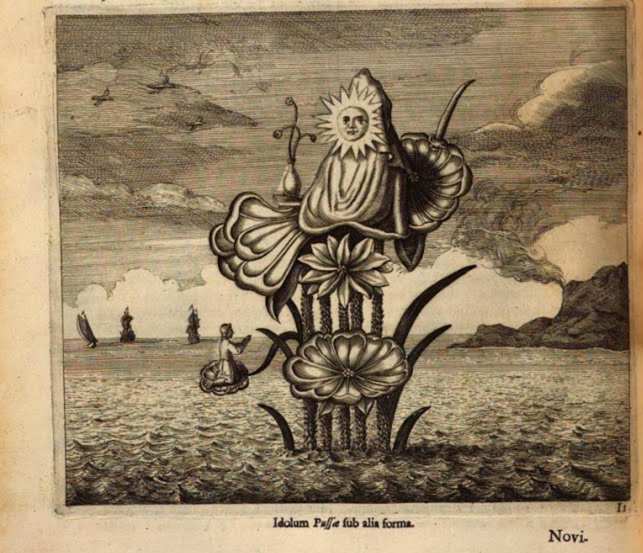 Kircher weird lily sea monster
